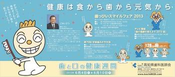 20130531県歯広告・高知新聞.jpg